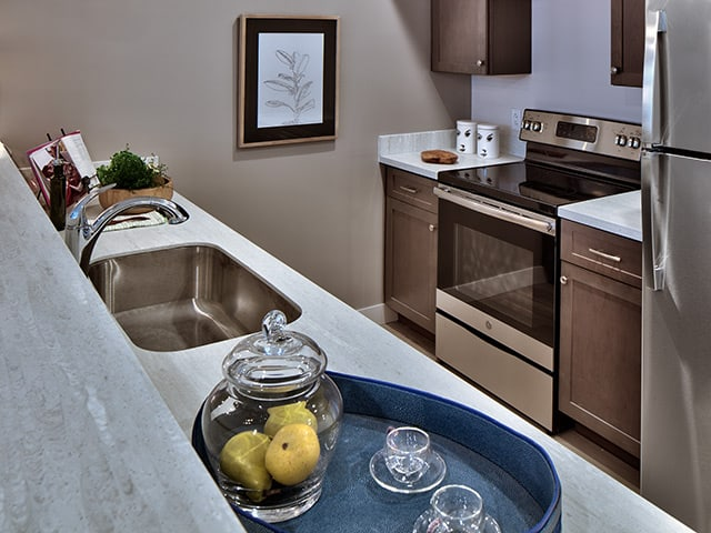 Granite countertops and stainless appliances